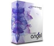Женский презерватив Cupid Angel